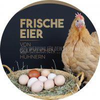 Rund | Frische Eier Werbeschild | Poster | Rundformat