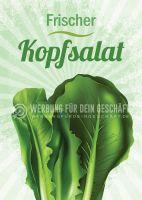 Frischer Kopfsalat Poster | Werbeschild Kopfsalat