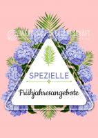 Spezielle Frühjahresangebote Plakat