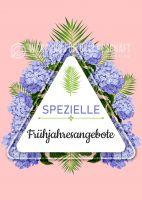 Spezielle Frühjahresangebote Plakat | Werbeplakat für Geschäfte