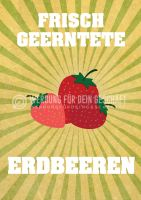 Frisch geerntete Erdbeeren Poster
