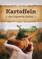 Kartoffeln aus eigenem Anbau Werbeposter | Plakat auch in DIN A 0