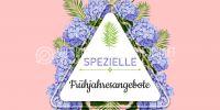2:1 | Spezielle Frühjahresangebote Plakat | Werbeplakat für Geschäfte | 2 zu 1 Format