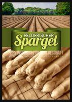 Feldfrischer Spargel Plakat