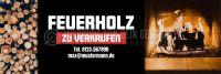 3:1   Feuerholz zu verkaufen Werbeposter   Plakat auch in DIN A 1   3 zu 1 Format