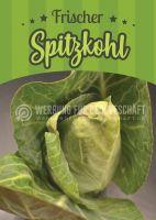 Frischer Spitzkohl Plakat | Werbeposter Gemüse