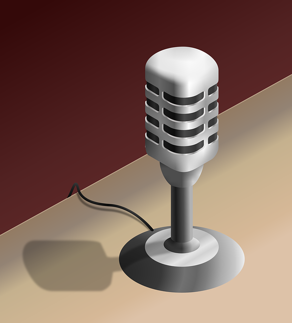 media/image/microphone-3553791_640.png