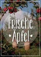 Frische Äpfel Plakat | Werbetafel für Äpfel