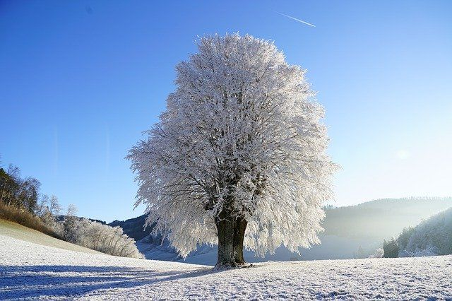 Im Winter werden gerne Saisonartikel verschenkt