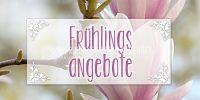 2:1 | Frühlingsangebote Poster | Werbeposter für den Frühling | 2 zu 1 Format