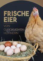 Frische Eier Werbeschild | Poster