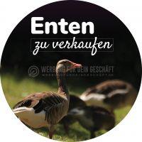 Rund | Enten zu verkaufen Werbebanner | Poster kaufen | Rundformat