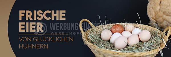 wfdg-0200716-frische-eier-von-gl-cklichen-h-hnerncL6MaVamZLSnk