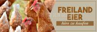 3:1 | Freiland Eier Plakat | Werbeposter | 3 zu 1 Format