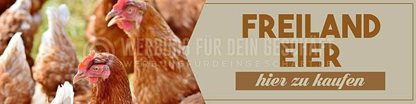 wfdg-0300715-freiland-eier-hier-zu-kaufenC5RFD1eZgsqlc