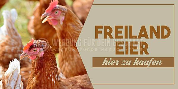 wfdg-0100715-freiland-eier-hier-zu-kaufenDnsVxBdIp1q6r