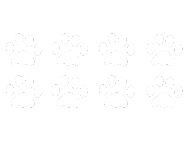 Hundepfoten Wandtattoo