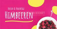 2:1 | Frische & fruchtige Himbeeren Poster | Werbebanner für deinen Hofladen | 2 zu 1 Format