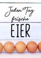 Jeden Tag frische Eier Plakat | Werbeschild für Eier