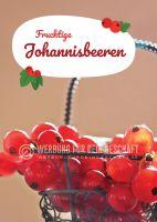 Fruchtige Johannisbeeren Plakat | Poster für Werbeaufsteller
