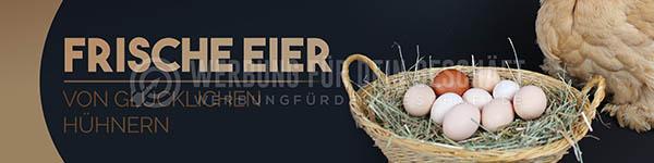 wfdg-0300716-frische-eier-von-gl-cklichen-h-hnernfOZP5dZs7K3x9